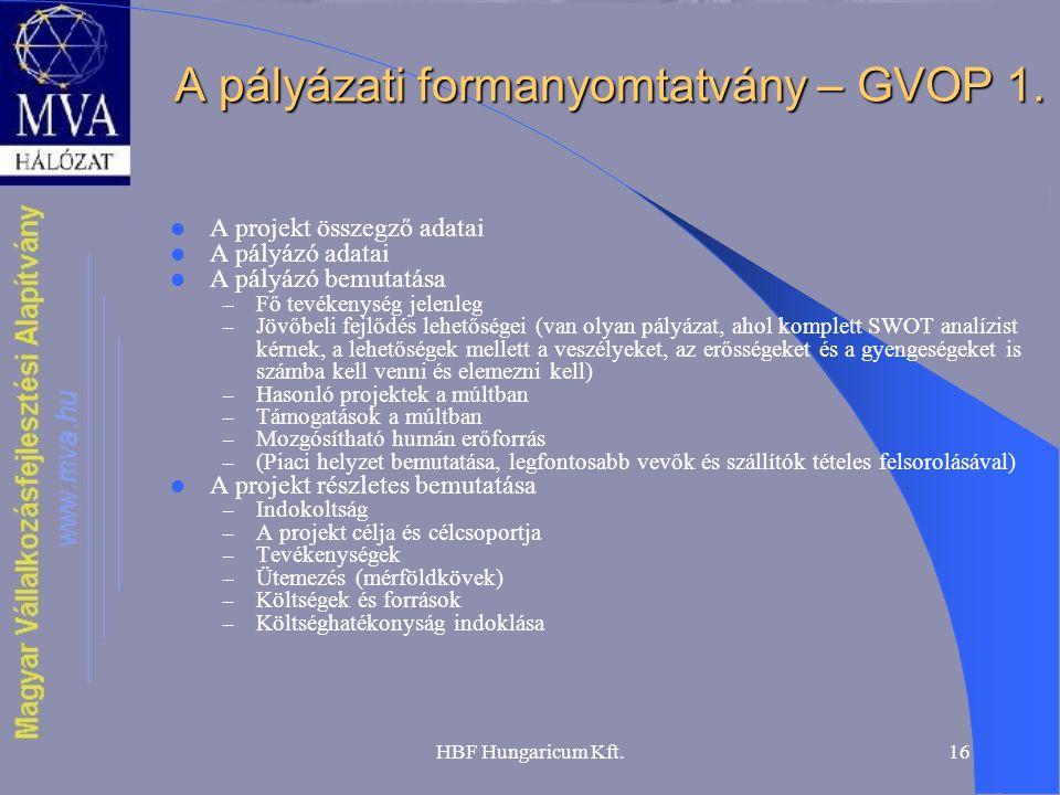 HBF Hungaricum Kft.16 A pályázati formanyomtatvány – GVOP 1.  A projekt összegző adatai  A pályázó adatai  A pályázó bemutatása – Fő tevékenység je