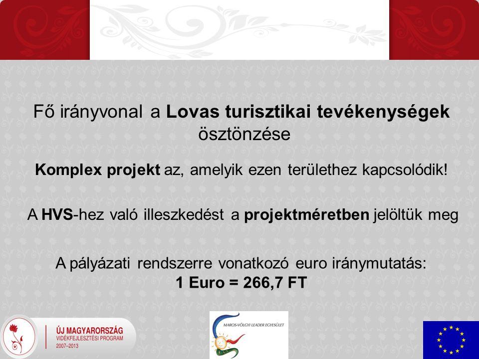 Fő irányvonal a Lovas turisztikai tevékenységek ösztönzése Komplex projekt az, amelyik ezen területhez kapcsolódik.