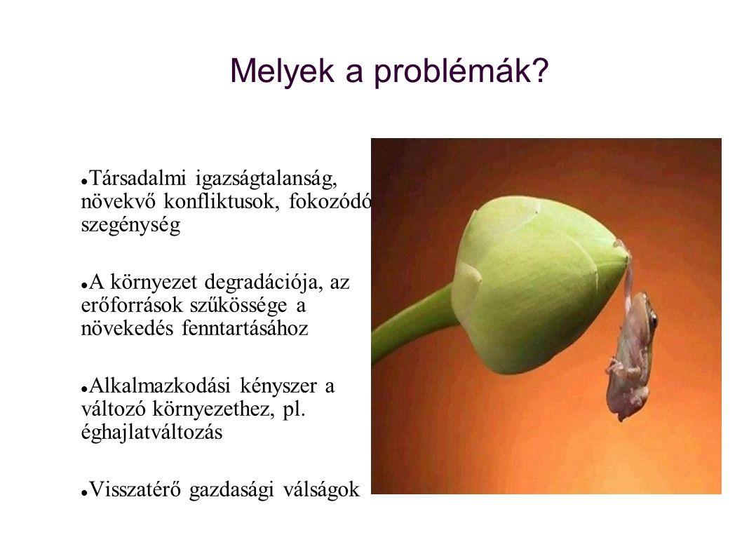 Melyek a problémák?  Társadalmi igazságtalanság, növekvő konfliktusok, fokozódó szegénység  A környezet degradációja, az erőforrások szűkössége a nö