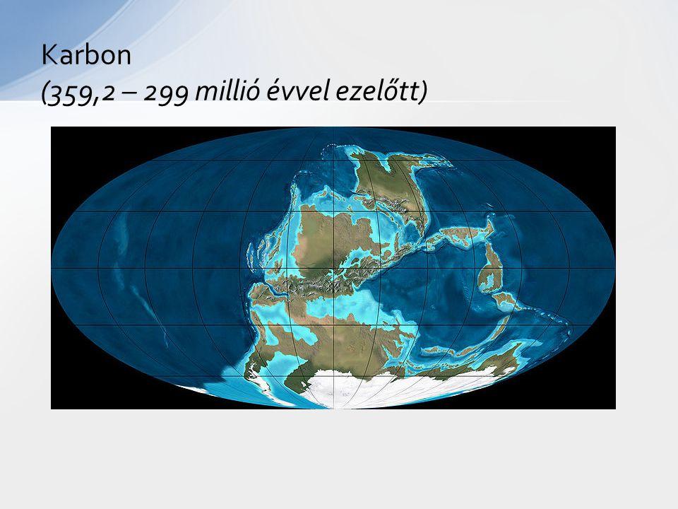 Karbon (359,2 – 299 millió évvel ezelőtt)