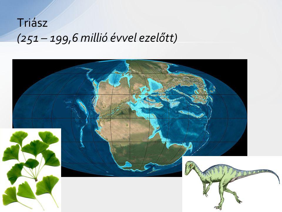 Triász (251 – 199,6 millió évvel ezelőtt)