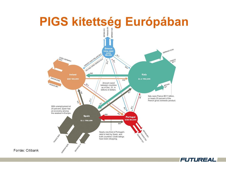 PIGS kitettség Európában Forrás: Citibank
