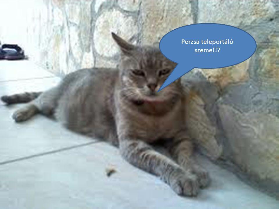 Perzsa teleportáló szeme!!
