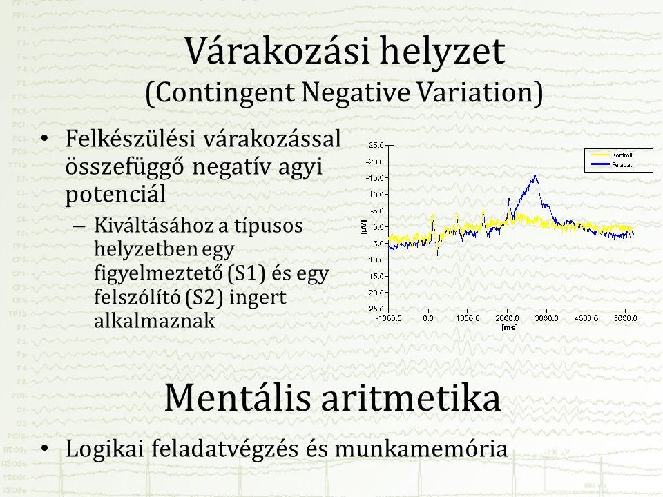 Várakozási helyzet (Contingent Negative Variation) • Felkészülési várakozással összefüggő negatív agyi potenciál – Kiváltásához a típusos helyzetben e