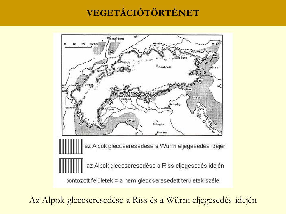 VEGETÁCIÓTÖRTÉNET Az Alpok gleccseresedése a Riss és a Würm eljegesedés idején