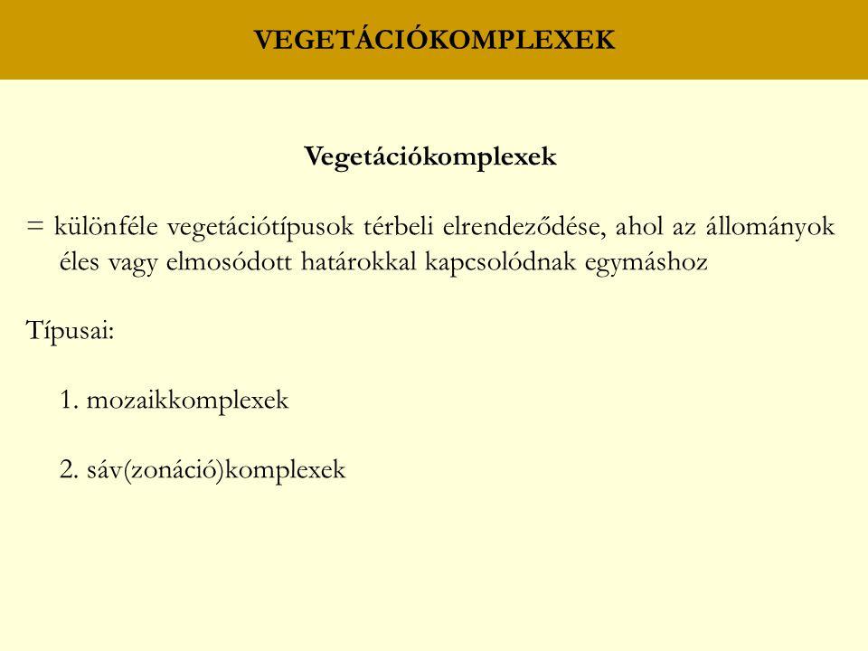 Vegetációkomplexek = különféle vegetációtípusok térbeli elrendeződése, ahol az állományok éles vagy elmosódott határokkal kapcsolódnak egymáshoz Típusai: 1.