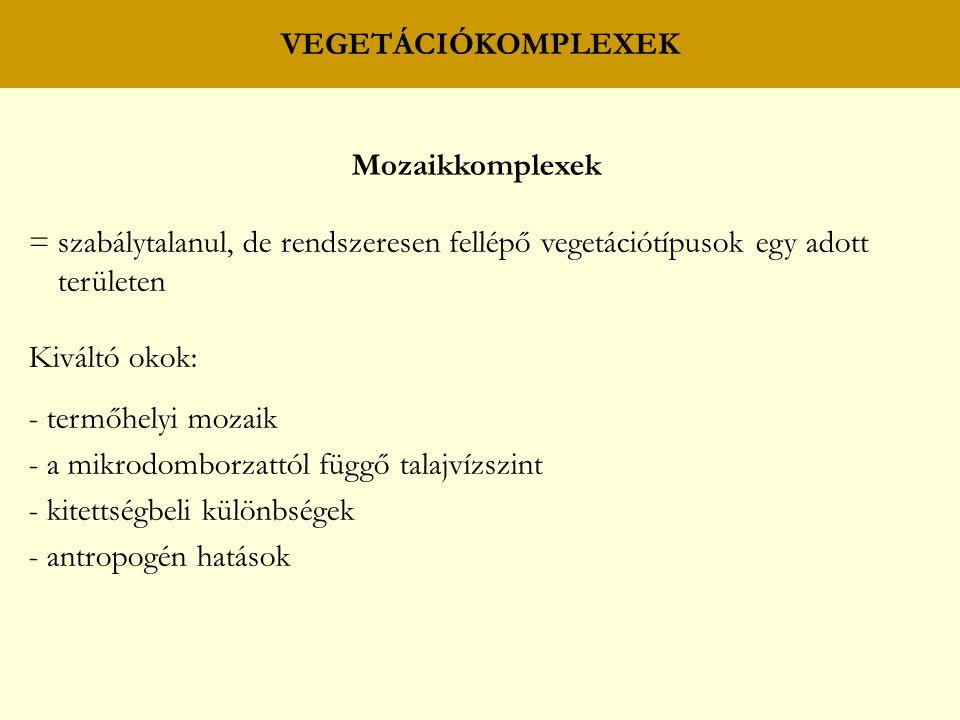 VEGETÁCIÓKOMPLEXEK Mozaikkomplexek = szabálytalanul, de rendszeresen fellépő vegetációtípusok egy adott területen Kiváltó okok: - termőhelyi mozaik -