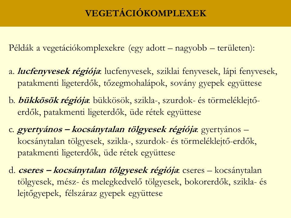 VEGETÁCIÓKOMPLEXEK Példák a vegetációkomplexekre (egy adott – nagyobb – területen): a. lucfenyvesek régiója: lucfenyvesek, sziklai fenyvesek, lápi fen