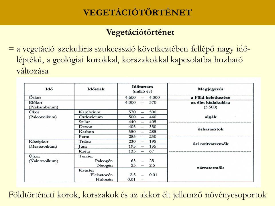 Vegetációtörténet = a vegetáció szekuláris szukcesszió következtében fellépő nagy idő- léptékű, a geológiai korokkal, korszakokkal kapcsolatba hozható