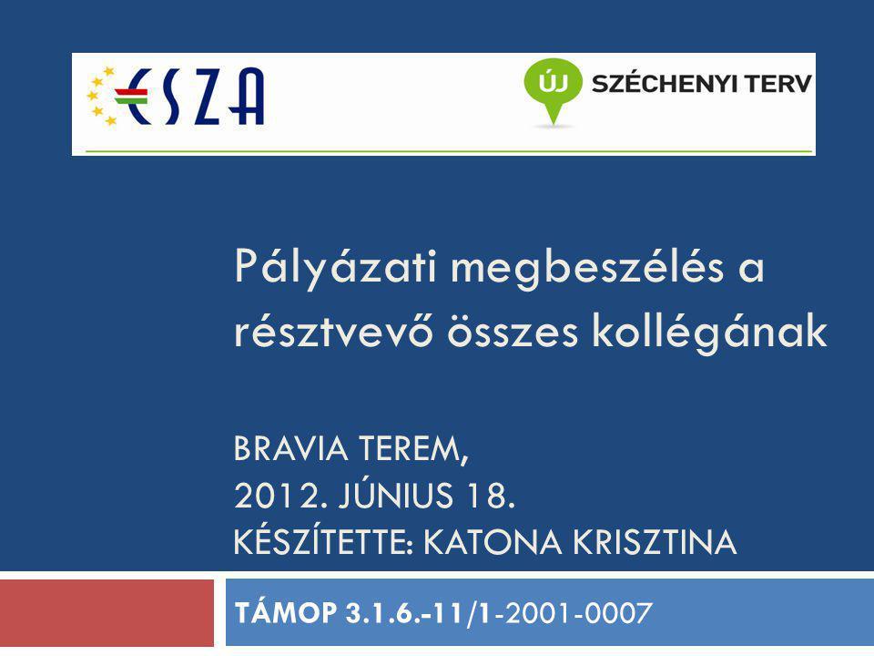 Pályázati megbeszélés a résztvevő összes kollégának BRAVIA TEREM, 2012. JÚNIUS 18. KÉSZÍTETTE: KATONA KRISZTINA TÁMOP 3.1.6.-11/1-2001-0007