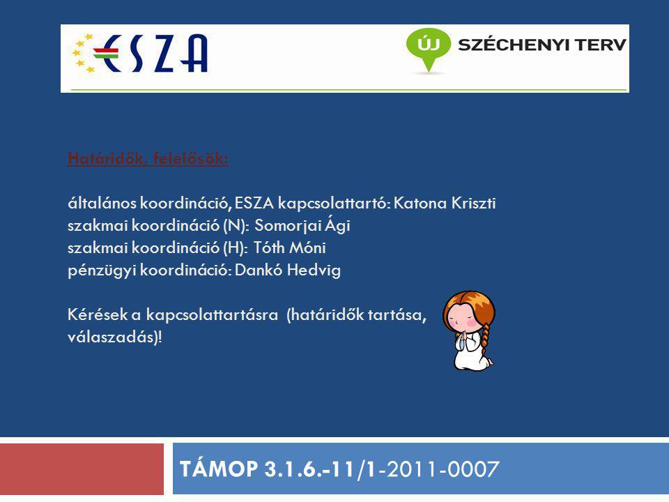 Határidők, felelősök: általános koordináció, ESZA kapcsolattartó: Katona Kriszti szakmai koordináció (N): Somorjai Ági szakmai koordináció (H): Tóth M