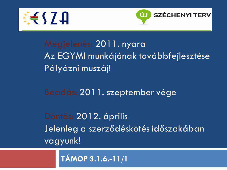 Megjelenés: 2011. nyara Az EGYMI munkájának továbbfejlesztése Pályázni muszáj! Beadás: 2011. szeptember vége Döntés: 2012. április Jelenleg a szerződé