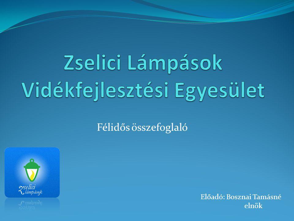 Előzmények  A Zselici Lámpások Vidékfejlesztési Közösség 2007.