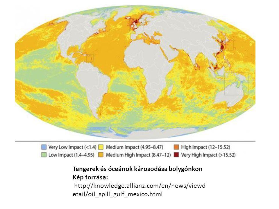 Tengerek és óceánok károsodása bolygónkon Kép forrása: http://knowledge.allianz.com/en/news/viewd etail/oil_spill_gulf_mexico.html