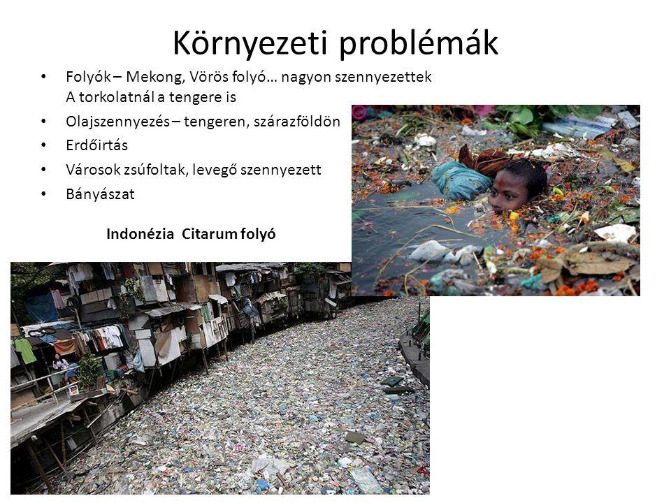 Környezeti problémák • Folyók – Mekong, Vörös folyó… nagyon szennyezettek A torkolatnál a tengere is • Olajszennyezés – tengeren, szárazföldön • Erdőirtás • Városok zsúfoltak, levegő szennyezett • Bányászat Indonézia Citarum folyó