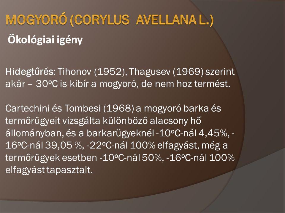 Ökológiai igény Hidegtűrés: Tihonov (1952), Thagusev (1969) szerint akár – 30 o C is kibír a mogyoró, de nem hoz termést. Cartechini és Tombesi (1968)
