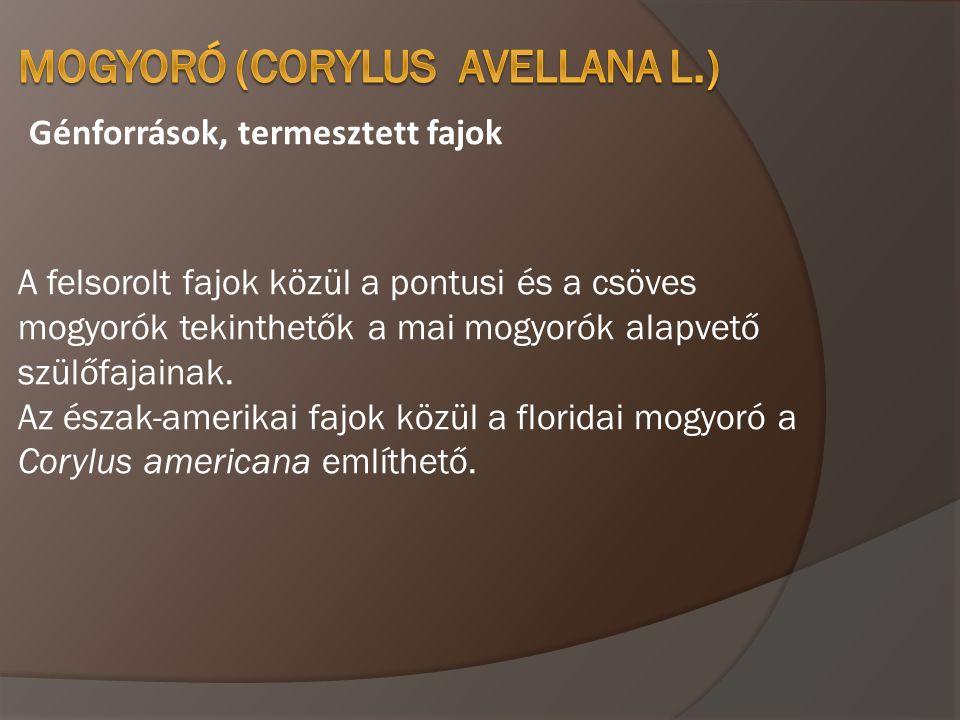 Fenológiai jellemzők, virágzásbiológiai ismérvek A termés érése magyarországi viszonyok között augusztus közepe szeptember vége között van, szerbiai viszonyok kötött 10 nappal korábban.