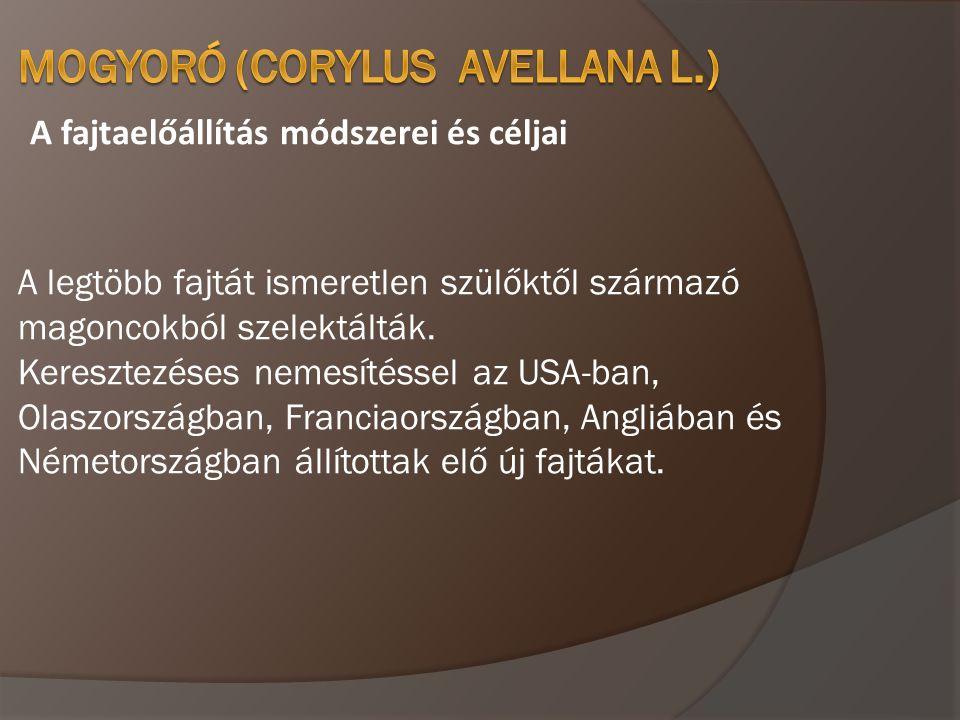 Termékenyülés biológia, fajtatársítás A termés érése magyarországi viszonyok között augusztus közepe szeptember vége között van, szerbiai viszonyok kötött 10 nappal korábban.
