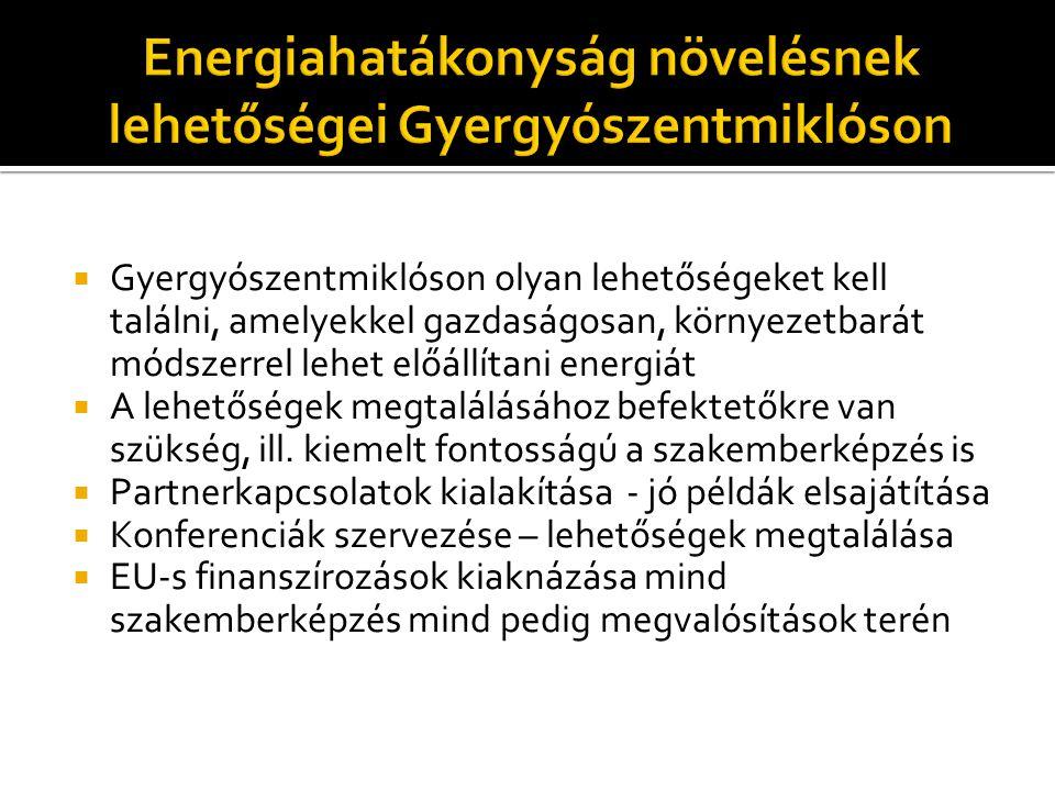  Gyergyószentmiklós és környéke újrahasznosítható energiaforrás adta lehetőségei  Fahulladék alapú biomassza: fűtésrendszer működtetésre  Napenergia: villamos energia és melegvíz előállításához  Szélenergia  Vízenergia  Esetlegesen geotermikus energiaforrás felhasználása  Gyergyószentmiklós energia megtakarítási és hatékonyság növelési lehetőségei mint kiegészítés:  Tömbház szigetelés  Belső fűtéshálózatok korszerűsítése  Közvilágítás korszerűsítése  Közlekedés átszervezése