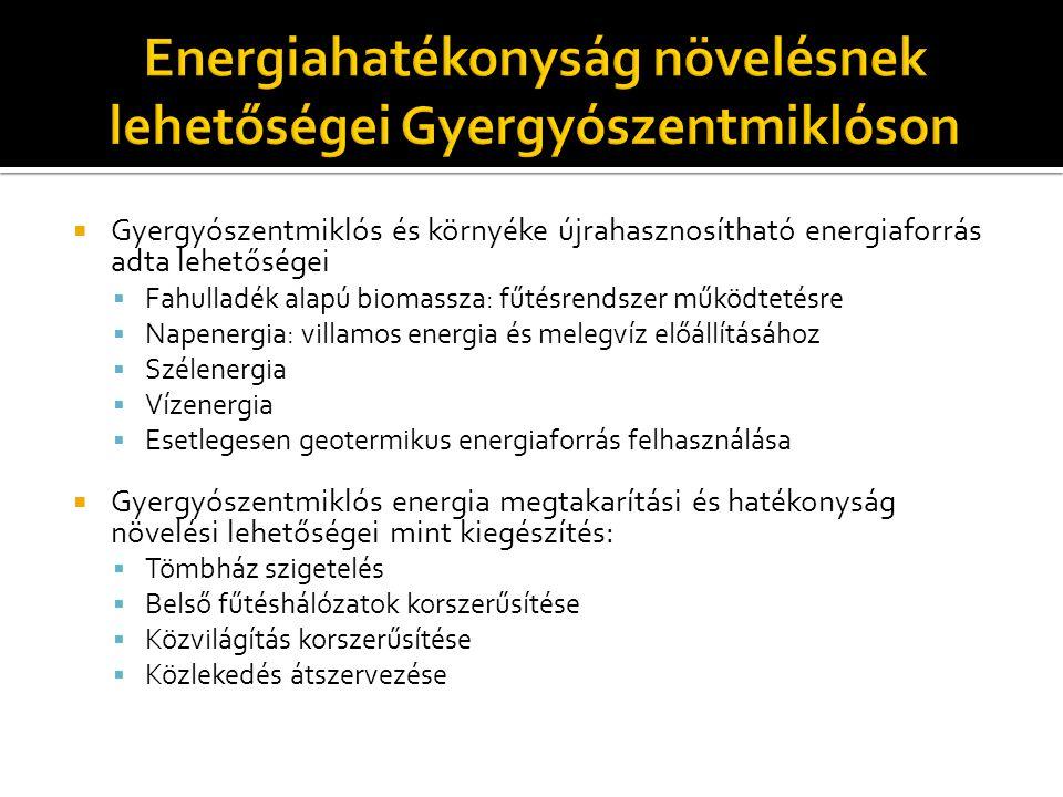 Gyergyószentmiklósi programok, lépések az energiafelhasználás terén:  Központi fűtésrendszer korszerűsítése: fűrészkorpa tüzelőanyagú, 6 MW-os központifűtés kazán üzembe helyezése egy tömbháznegyed központifűtés rendszerének felújításával, 2003-tól kezdődően (Dán Kormányprogram)  Gyergyószentmiklós többi tömbháznegyedének központifűtéshálózatára a korszerű vezetékrendszer megteremtése 2005-tól kezdődően (Belügy és Közigazgatási Reformok Minisztériuma)  Fa őrlemény tüzelőanyagú, 3 MW és 9 MW-os központifűtés kazán üzembe helyezése a meglévők mellé, két tömbháznegyed központifűtés rendszerének felújításával, 2009-tól kezdődően (magán befektető)  Közvilágítási világítótestek cseréje az egész városban 2009-ben (magán befektető)  Tömbházszigetelési program elindítás (két tömbház) 2009-ben (Vidék és Turisztika Fejlesztési Minisztérium)  Napkollektorok szerelése hét közoktatási intézmény tetejére melegvíz előállítás céljából 2010-tő (Környezetvédelmi Alap)  Szélenergia felhasználására a mérési adatok gyűjtése 2012-től (Magán befektető)  Vízenergia felhasználásának felmérése