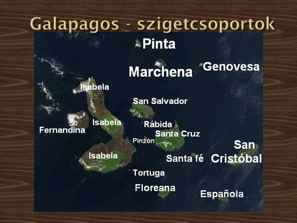A Galapagos szigetek ma Equadorhoz tartoznak és a Csendes óceánban, a Dél- amerikai kontinenstől nyugatra, az egyenlítő mentén találhatók.