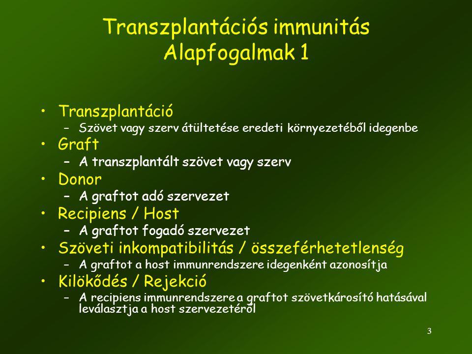3 •Transzplantáció –Szövet vagy szerv átültetése eredeti környezetéből idegenbe •Graft –A transzplantált szövet vagy szerv •Donor –A graftot adó szerv