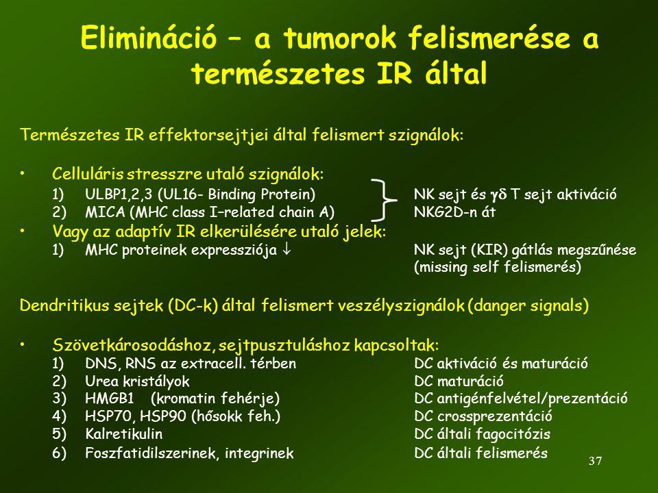 37 Elimináció – a tumorok felismerése a természetes IR által Természetes IR effektorsejtjei által felismert szignálok: •Celluláris stresszre utaló szi