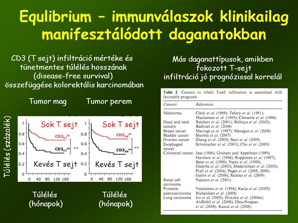 44 Equlibrium – immunválaszok klinikailag manifesztálódott daganatokban CD3 (T sejt) infiltráció mértéke és tünetmentes túlélés hosszának (disease-fre