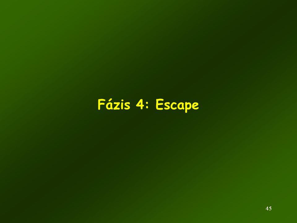 45 Fázis 4: Escape