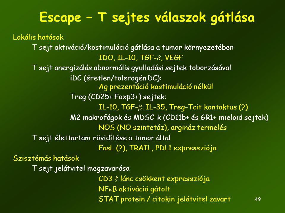 49 Escape – T sejtes válaszok gátlása Lokális hatások T sejt aktiváció/kostimuláció gátlása a tumor környezetében IDO, IL-10, TGF- , VEGF T sejt aner