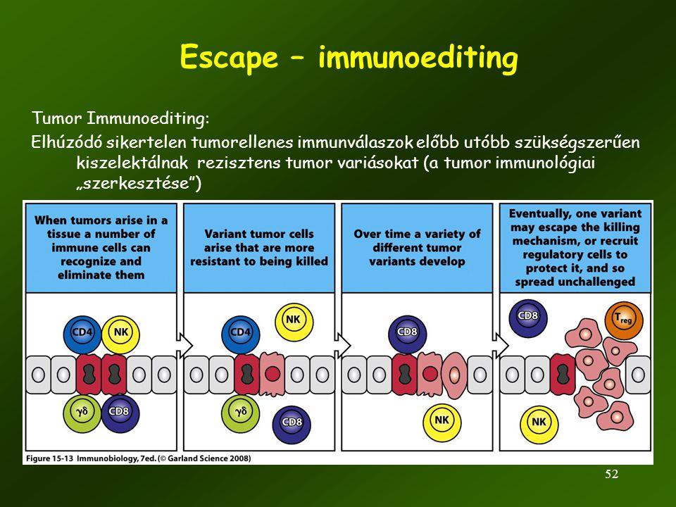 52 Escape – immunoediting Tumor Immunoediting: Elhúzódó sikertelen tumorellenes immunválaszok előbb utóbb szükségszerűen kiszelektálnak rezisztens tum