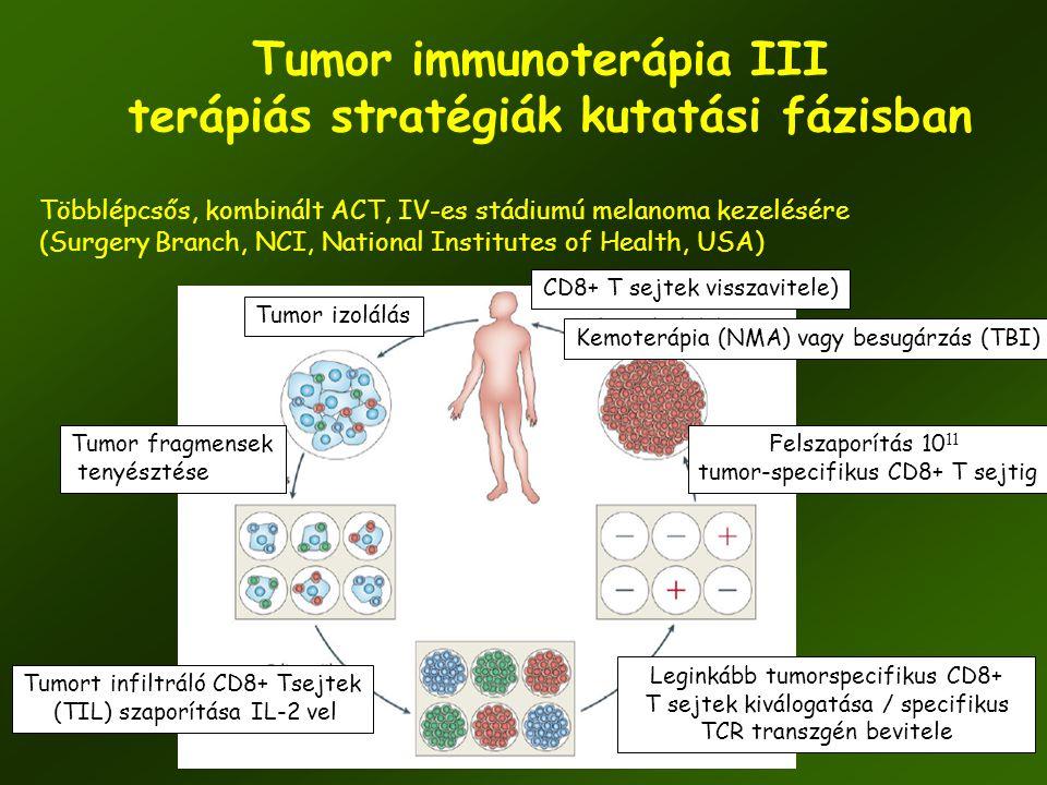 56 Tumor immunoterápia III terápiás stratégiák kutatási fázisban Többlépcsős, kombinált ACT, IV-es stádiumú melanoma kezelésére (Surgery Branch, NCI,