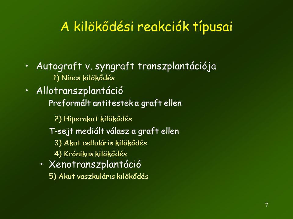 8 Hiperakut kilökődés (percek-órák) Szekunder immunválasz –A host már a graft beültetése előtt pre- immunizált •Expozíció korábbi vértranszfúzióval •Korábbi terhesség vagy vetélés miatt •Más preformált antitestek keresztreagálnak a grafttal –Graft-ellenes allo-reaktív antitestek azonnal reagálnak: •Gyors komplement aktiváció •ADCC (Antitestfüggő sejtes citotoxicitás) •Gyors véragglutináció, trombózis •Kilökődés akár már a graft reperfúzója után azonnal •Tipikusan rosszul tervezett vese transzplantáció, vértranszfúzó esetén Trombózis hiperakut rejekcióban Hiperakut kilökődés - vese