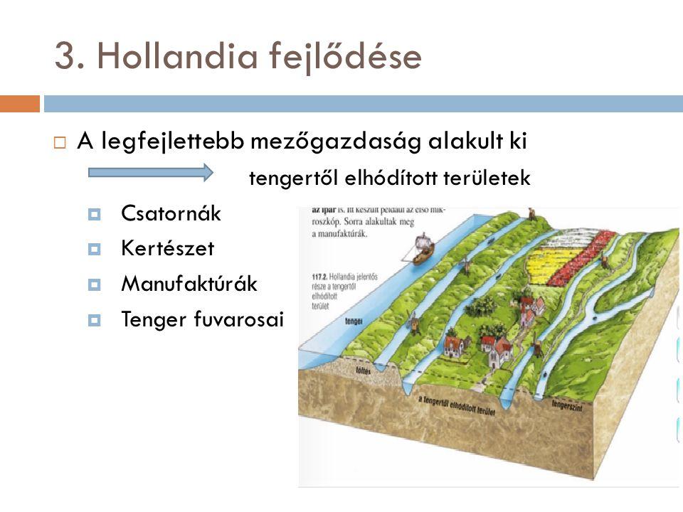 3. Hollandia fejlődése  A legfejlettebb mezőgazdaság alakult ki tengertől elhódított területek  Csatornák  Kertészet  Manufaktúrák  Tenger fuvaro
