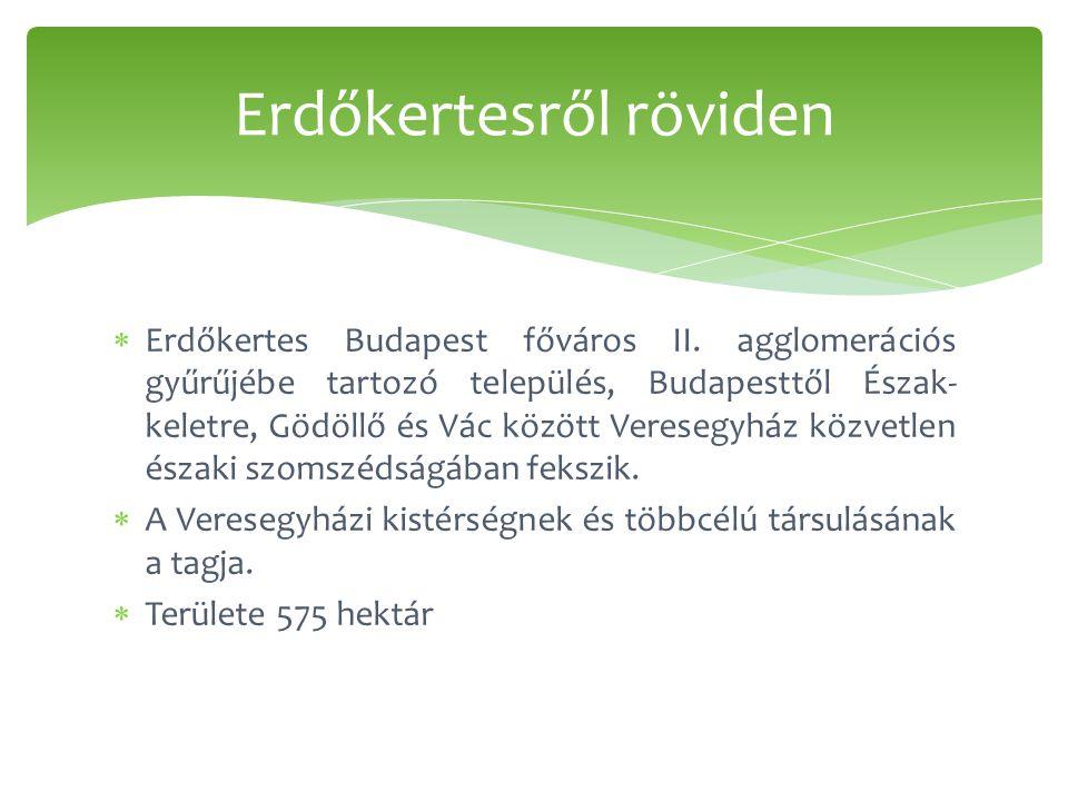  Erdőkertes Budapest főváros II.