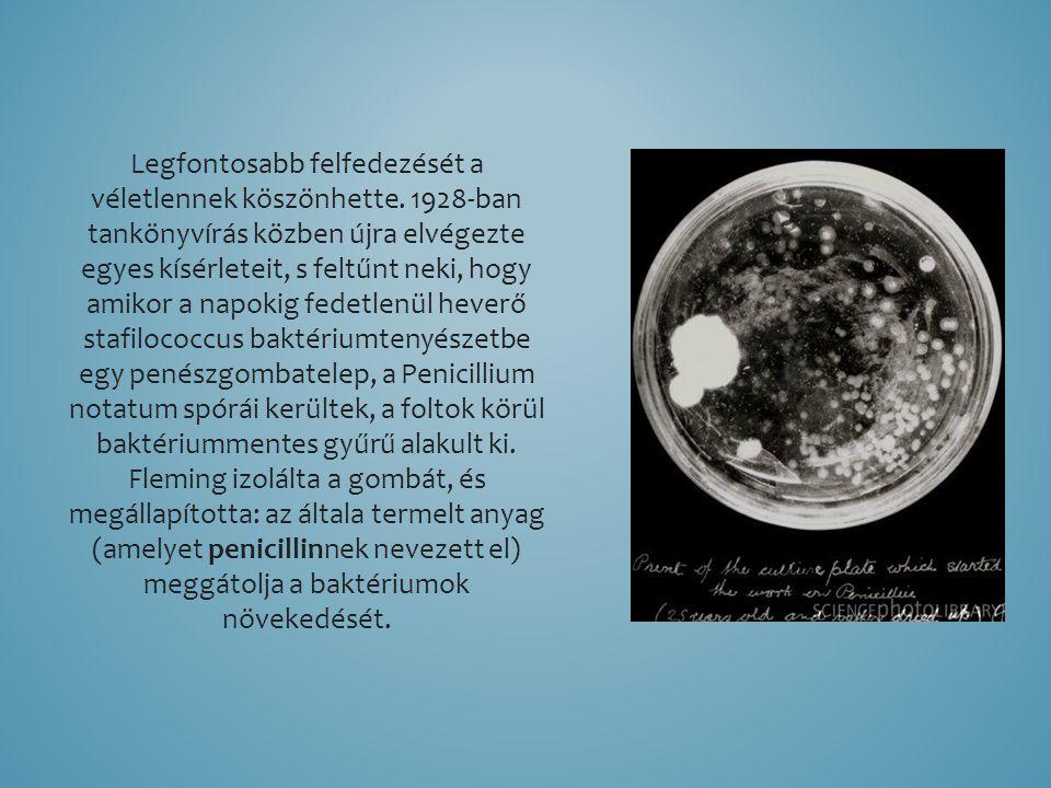 Legfontosabb felfedezését a véletlennek köszönhette. 1928-ban tankönyvírás közben újra elvégezte egyes kísérleteit, s feltűnt neki, hogy amikor a napo