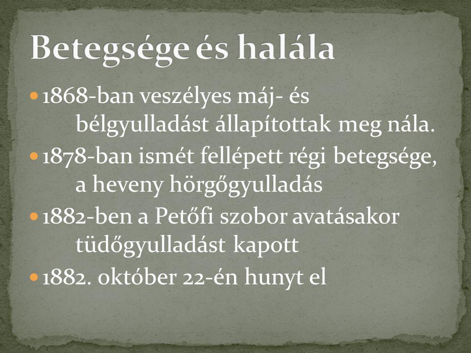  1868-ban veszélyes máj- és bélgyulladást állapítottak meg nála.  1878-ban ismét fellépett régi betegsége, a heveny hörgőgyulladás  1882-ben a Pető