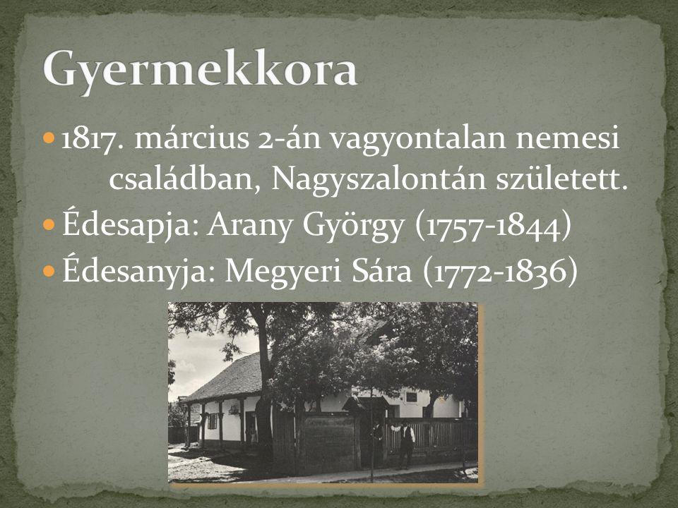  1817. március 2-án vagyontalan nemesi családban, Nagyszalontán született.  Édesapja: Arany György (1757-1844)  Édesanyja: Megyeri Sára (1772-1836)