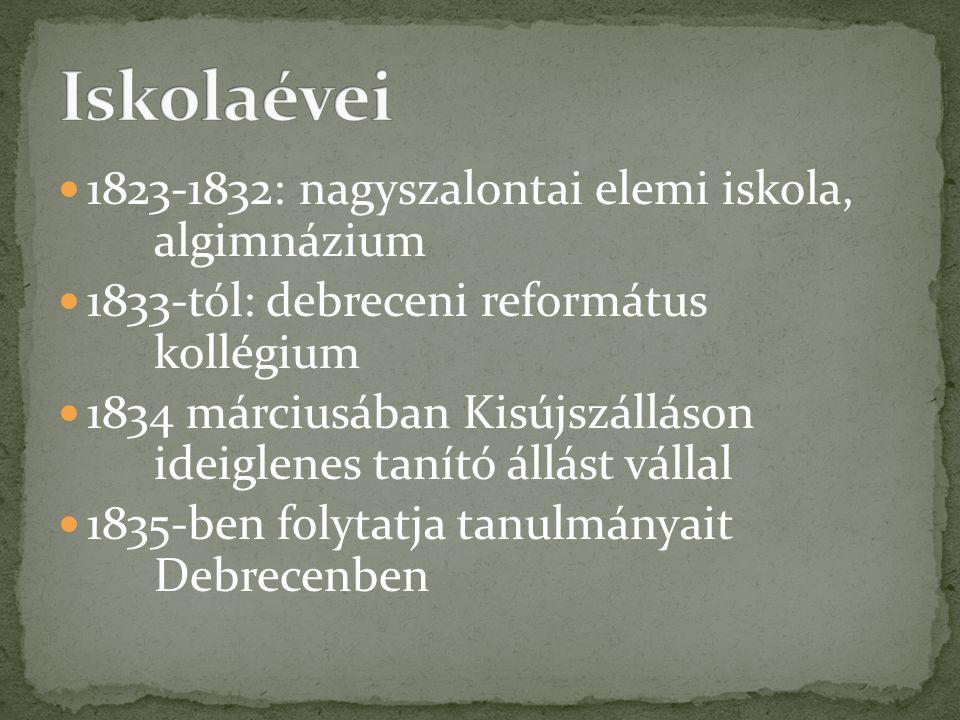  1823-1832: nagyszalontai elemi iskola, algimnázium  1833-tól: debreceni református kollégium  1834 márciusában Kisújszálláson ideiglenes tanító állást vállal  1835-ben folytatja tanulmányait Debrecenben