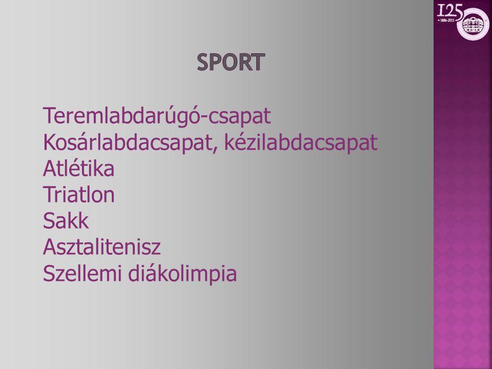 Teremlabdarúgó-csapat Kosárlabdacsapat, kézilabdacsapat Atlétika Triatlon Sakk Asztalitenisz Szellemi diákolimpia