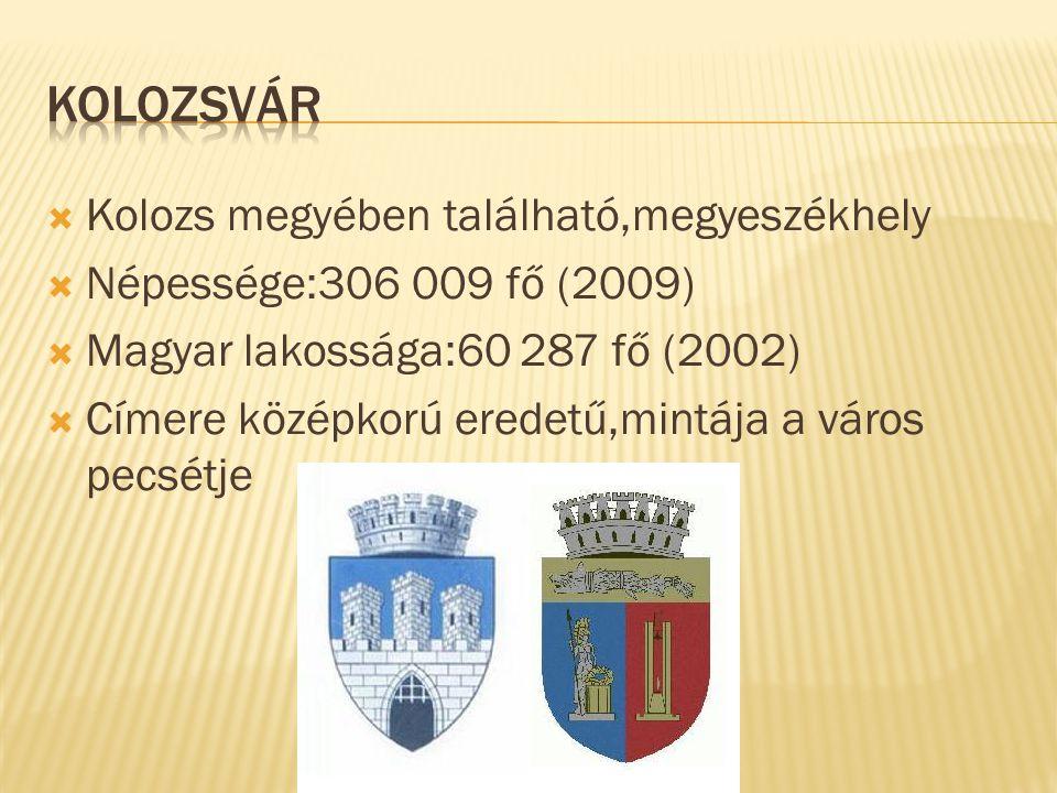  Kolozs megyében található,megyeszékhely  Népessége:306 009 fő (2009)  Magyar lakossága:60 287 fő (2002)  Címere középkorú eredetű,mintája a város
