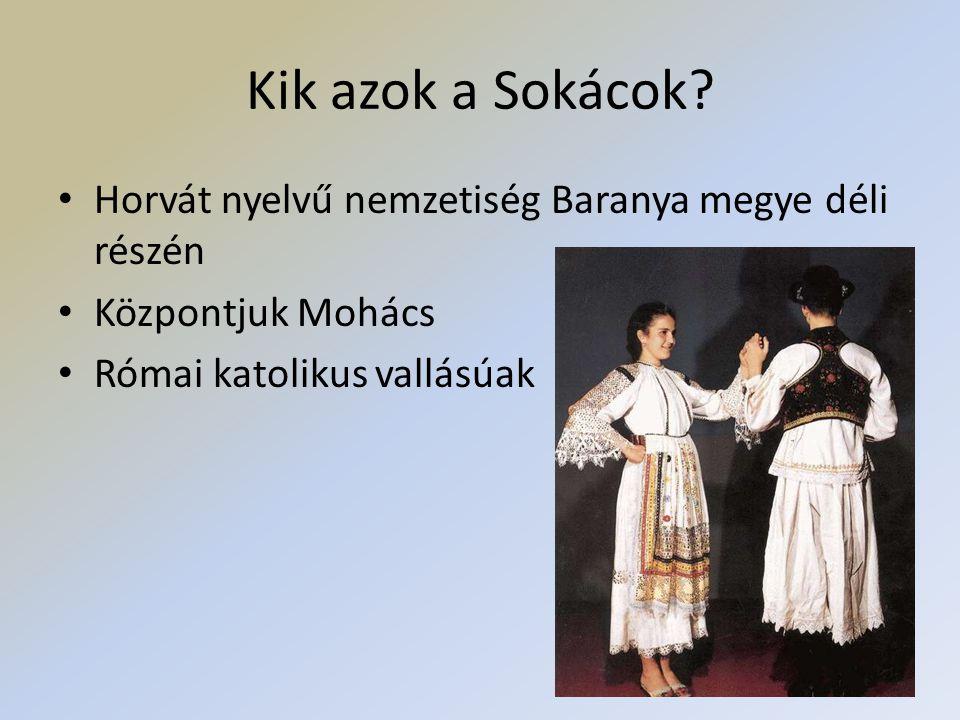 Busójárás máshol • Kezd feléledni a Mohács környéki falvakban is • Horvátországban is kezd divatba jönni • Busóház Mohácson: néprajzi kiállítás egész évben