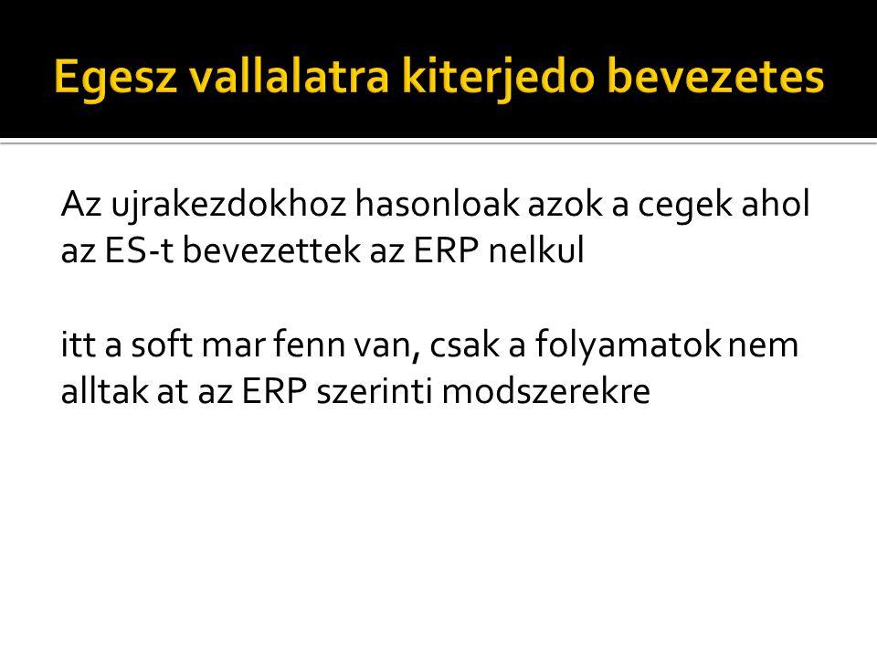 Az ujrakezdokhoz hasonloak azok a cegek ahol az ES-t bevezettek az ERP nelkul itt a soft mar fenn van, csak a folyamatok nem alltak at az ERP szerinti