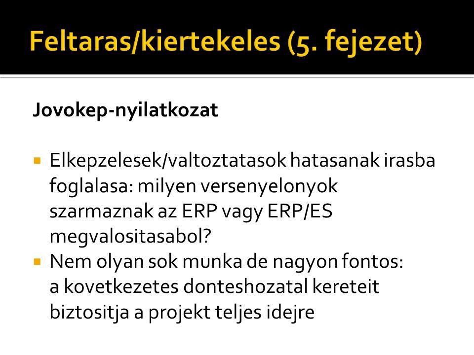 Jovokep-nyilatkozat  Elkepzelesek/valtoztatasok hatasanak irasba foglalasa: milyen versenyelonyok szarmaznak az ERP vagy ERP/ES megvalositasabol?  N