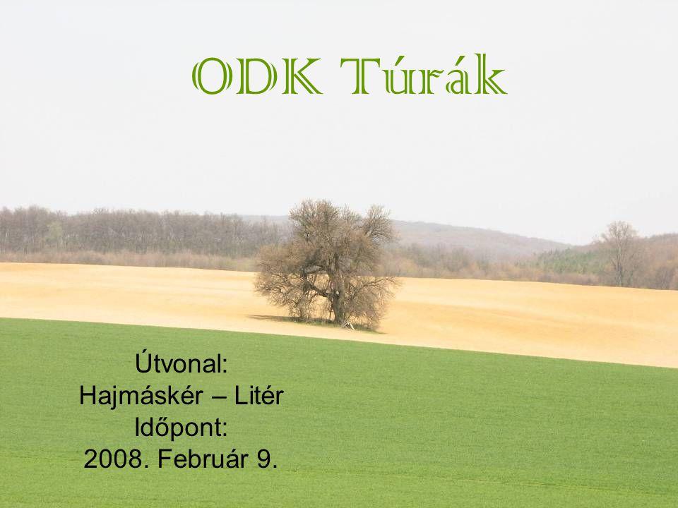 ODK Túrák Útvonal: Hajmáskér – Litér Időpont: 2008. Február 9.