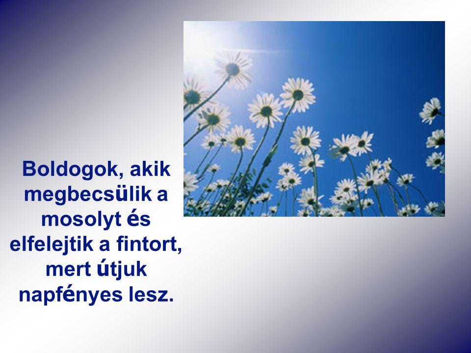 Boldogok, akik megbecs ü lik a mosolyt é s elfelejtik a fintort, mert ú tjuk napf é nyes lesz.