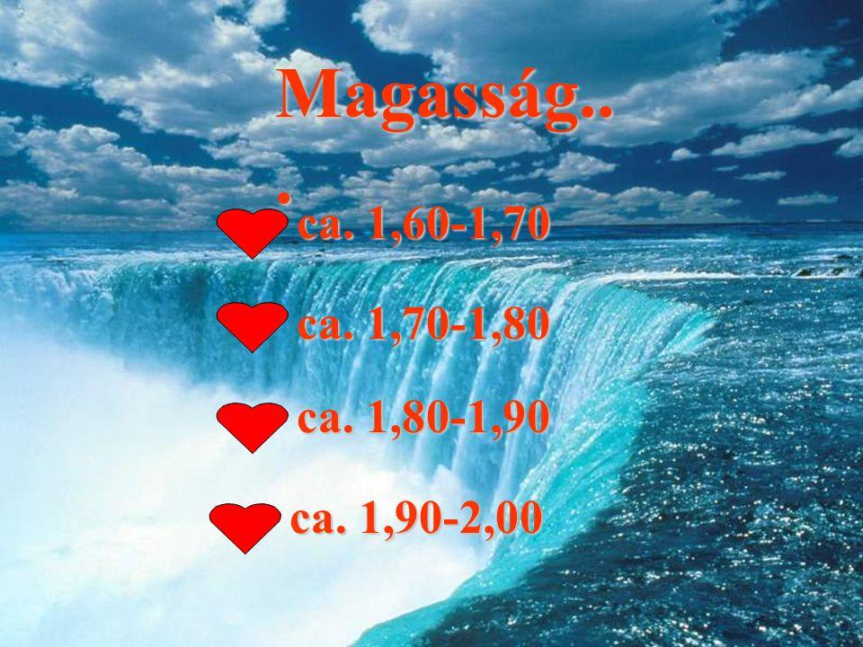 Magasság... ca. 1,60-1,70 ca. 1,70-1,80 ca. 1,80-1,90 ca. 1,90-2,00