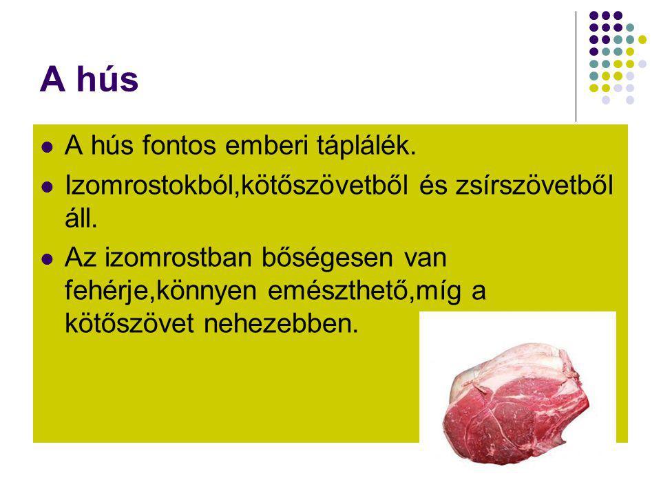 A hús  A hús fontos emberi táplálék.  Izomrostokból,kötőszövetből és zsírszövetből áll.  Az izomrostban bőségesen van fehérje,könnyen emészthető,mí