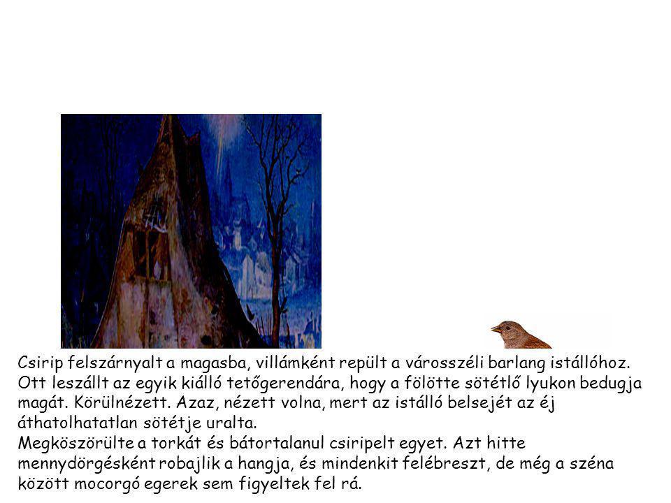 Csirip felszárnyalt a magasba, villámként repült a városszéli barlang istállóhoz.