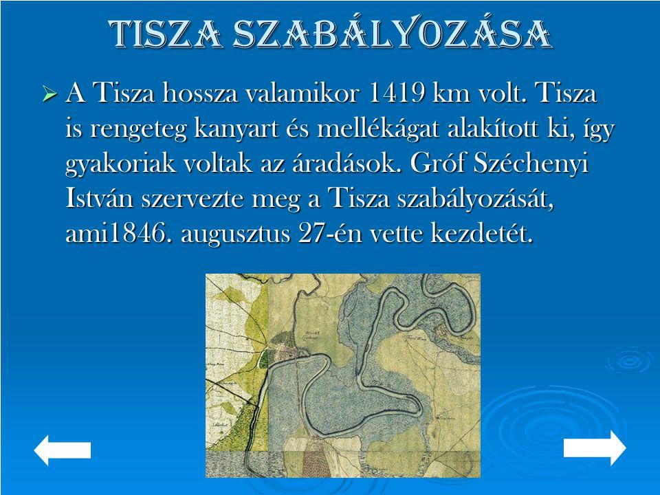 Tisza szabályozása  A Tisza hossza valamikor 1419 km volt. Tisza is rengeteg kanyart és mellékágat alakított ki, így gyakoriak voltak az áradások. Gr